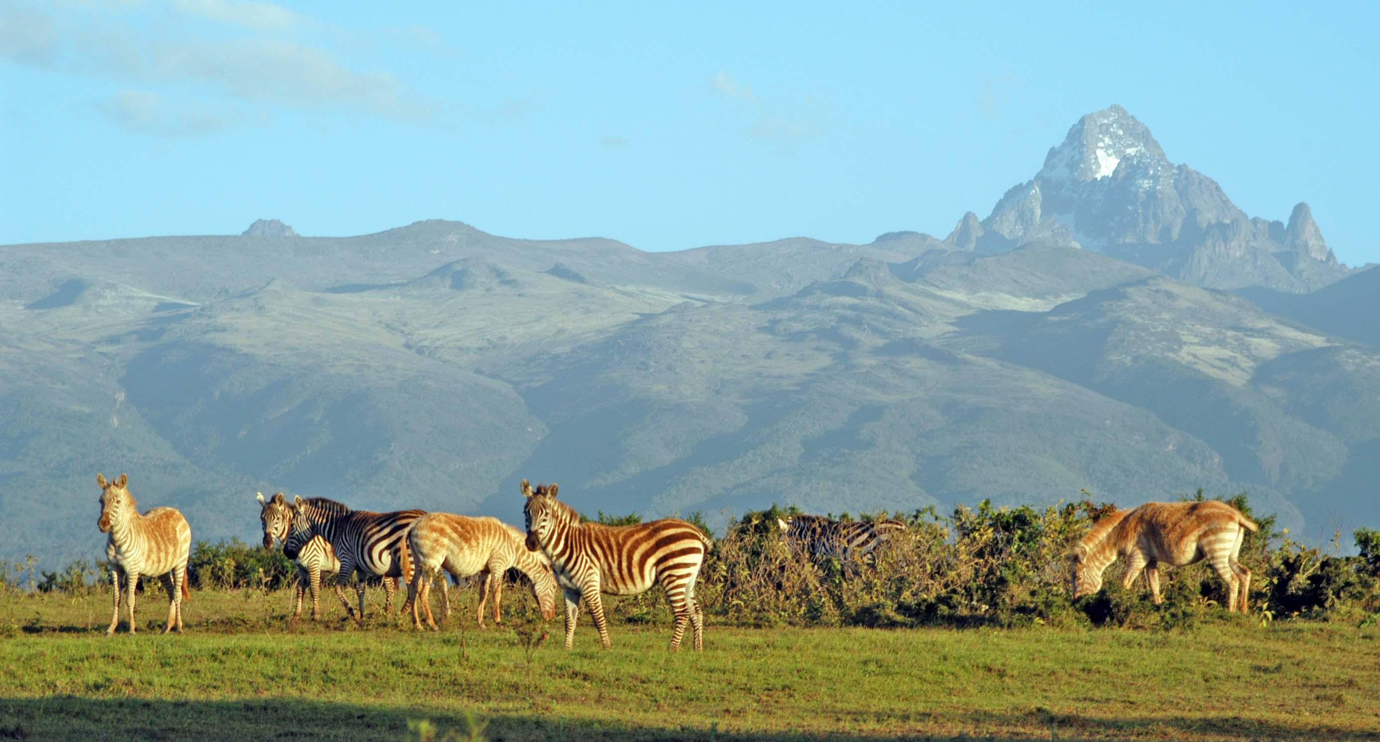 2-days-mount-kenya-national-park