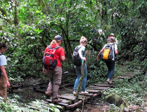 ADVENTURE TO KAKAMEGA FOREST